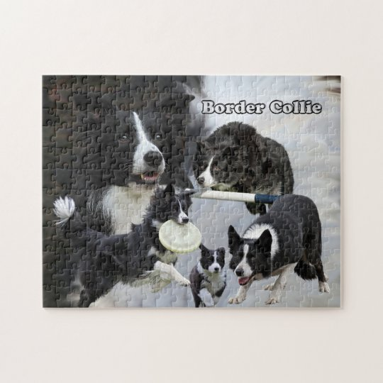 photo puzzle border collie collage