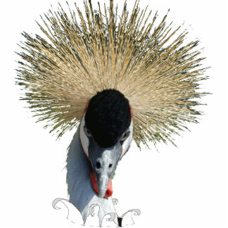 Photo Sculpture - Crowned Crane