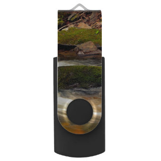 Photo Taken at Fires Creek in North Carolina Swivel USB 3.0 Flash Drive