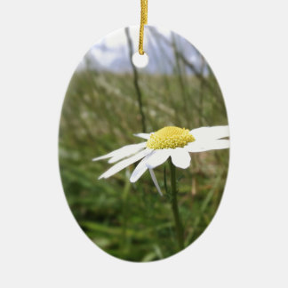 Photo taken by CarlyLouPhotography in Lincolnshire Ceramic Oval Decoration