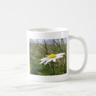 Photo taken by CarlyLouPhotography in Lincolnshire Mug