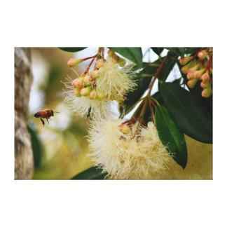 PHOTO TAKEN OF A HONEY BEE IN FLIGHT AUSTRALIA GALLERY WRAP CANVAS