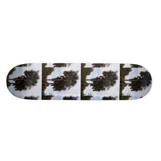 Photo Template Skateboard