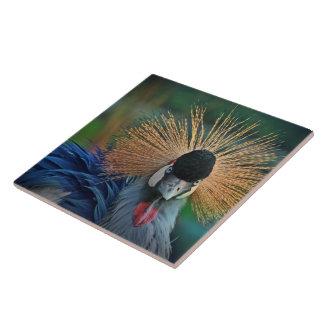 Photo tile crane