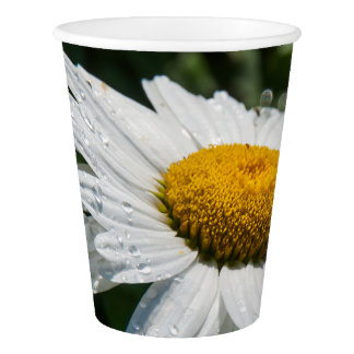 photograph, a margueritte, make green paper cup