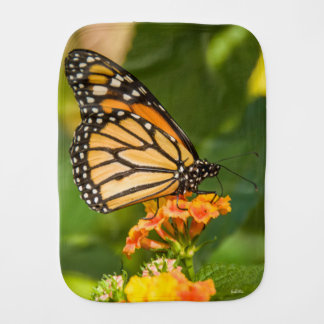 photograph of a butterfly burp cloth