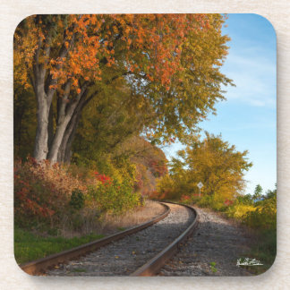 photograph of a railroad coaster