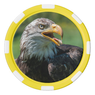 photograph of eagle poker chips