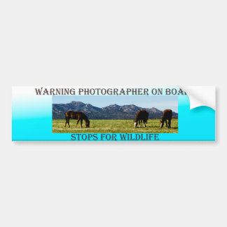 Photographer On Board Horses Bumper Sticker