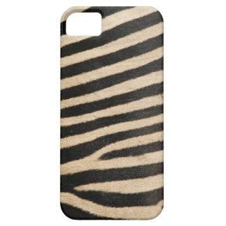 Photographic zebra print, textured. iPhone 5 covers