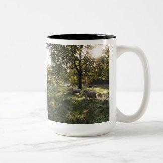 Photographing Sheep Two-Tone Mug