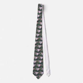 Photographs of pigs on a tie! tie