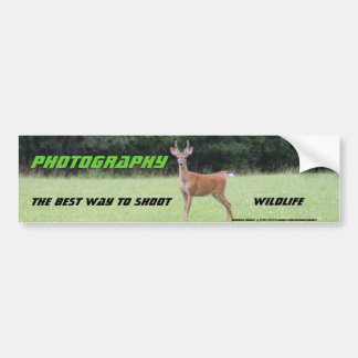 Photography: The best way to shoot Bumper Sticker