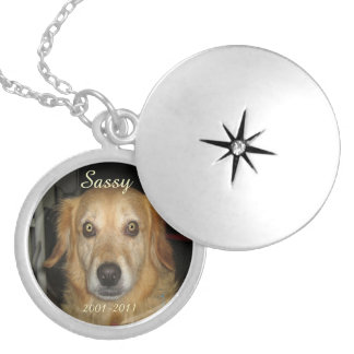 PhotoMemory of Pet Necklace.. Silver Plated Necklace
