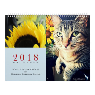 Photos From OK to CA, 12 Mo Calendar