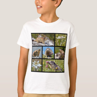 Photos mosaic Alpine marmots and edelweiss T-Shirt