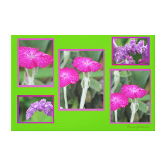 Photos on Canvas - Pink and Purple Flowers Stretched Canvas Print