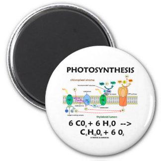 Photosynthesis Chemical Formula Fridge Magnets