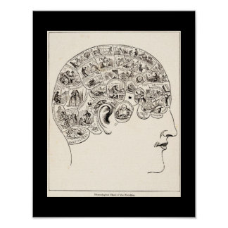 Phrenological chart of the faculties, vintage art