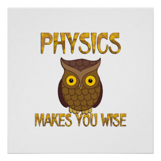 Physics Makes You Wise Poster
