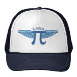Pi is my Co-Pilot Cap