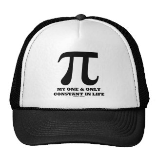 Pi My One And Only Constant In Life (Math Humor) Cap