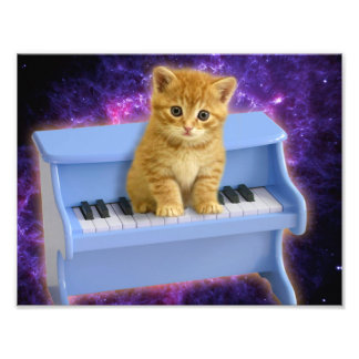 Piano cat photo print