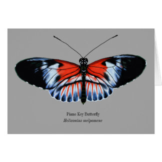 Piano Key Butterfly Painting in Black, Red, White Card