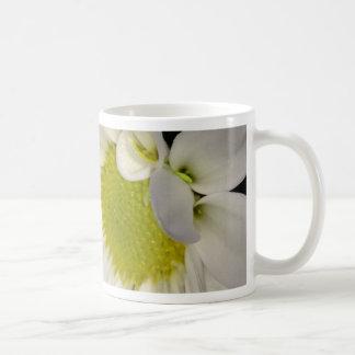 pic7.JPG Basic White Mug