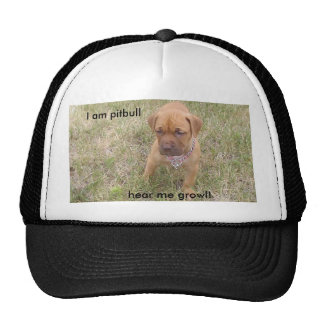 PIC_0236_5, I am pitbull   , hear me growl! Cap