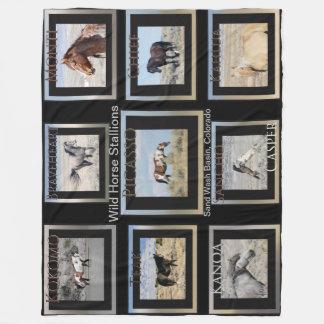 Picasso and Wild Horse Stallions Fleece Blanket