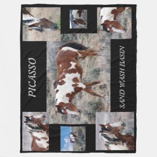 Picasso Icon of Sand Wash Basin,  Colorado Fleece Blanket