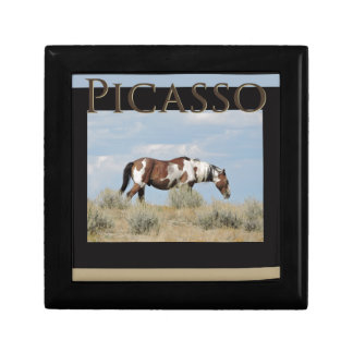 Picasso, Stallion of Sand Wash Basin, Colorado Gift Box