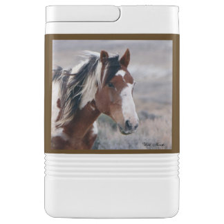 Picasso, Stallion of Sand Wash Basin Cooler