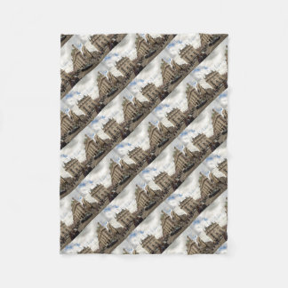Piccadilly Circus Fleece Blanket