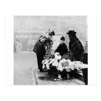 Piccadilly London flower seller, 1904 England Postcard