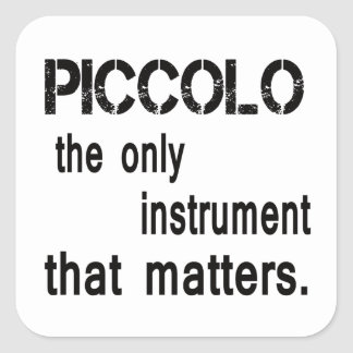 Piccolo the only instrument that matters. square sticker