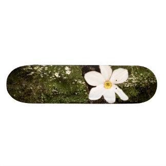Picked for You Skate Board Decks