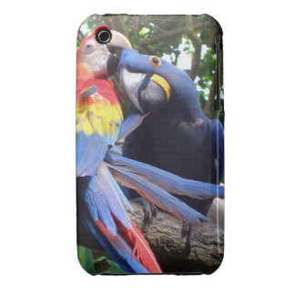 Picking On Me iPhone 3 Cases