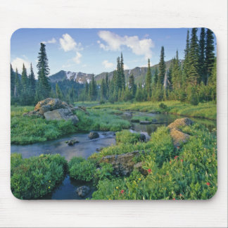 Picnic Creek in the Jewel Basin of the Swan Mouse Pads