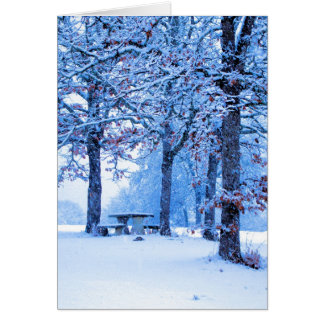 Picnic Table in Winter Card