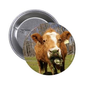 Picture 001 6 cm round badge
