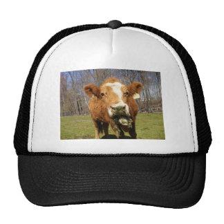 Picture 001 cap