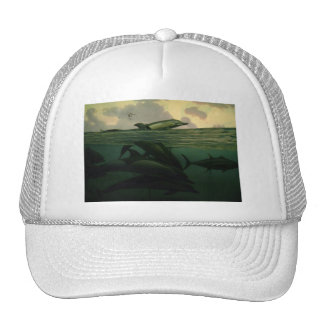 Picture 001 mesh hat
