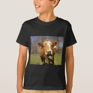 Picture 001 shirt