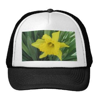 Picture 015 trucker hat