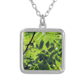 PICTURE 127 SILVER PLATED NECKLACE