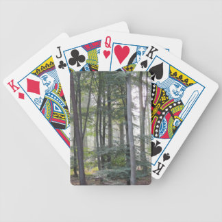 PICTURE 131 BICYCLE PLAYING CARDS