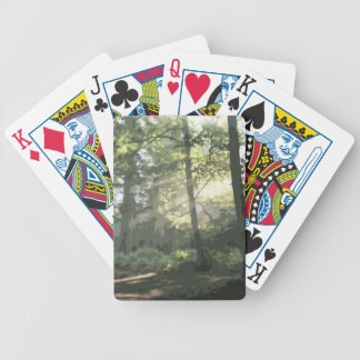 PICTURE 133 BICYCLE PLAYING CARDS