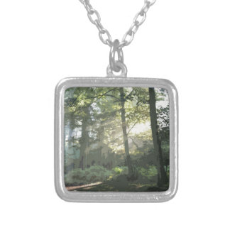 PICTURE 133 SILVER PLATED NECKLACE